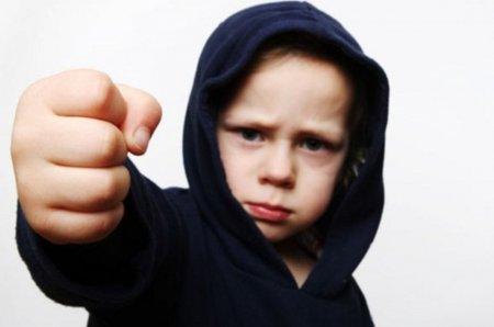 Откуда в детях жестокость? - « Как воспитывать ребенка»